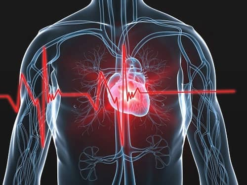 โรคหัวใจ (Heart disease)