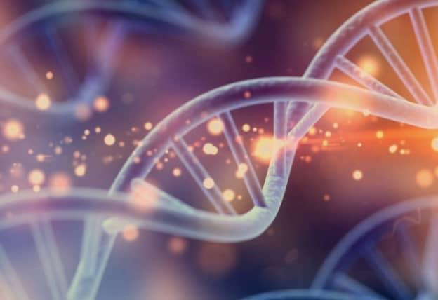 โรคทางพันธุกรรม (Genetic disease)