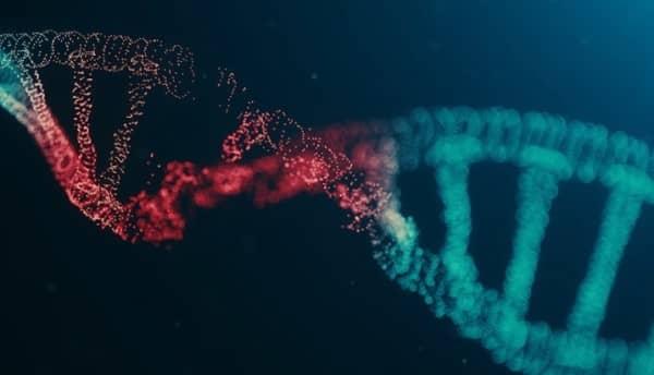 โรคทางพันธุกรรม (Genetic disease) : อาการ สาเหตุ การรักษา