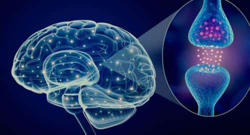 โรคพาร์กินสัน (Parkinson's disease) : อาการ สาเหตุ การรักษา