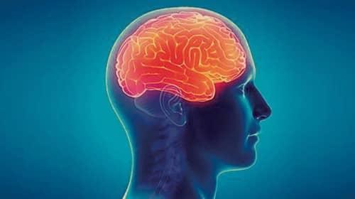 ไข้สมองอักเสบ (Encephalitis) : อาการ สาเหตุ การรักษา