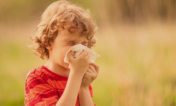 ไข้ละอองฟาง (Hay Fever) : อาการ สาเหตุ การรักษา